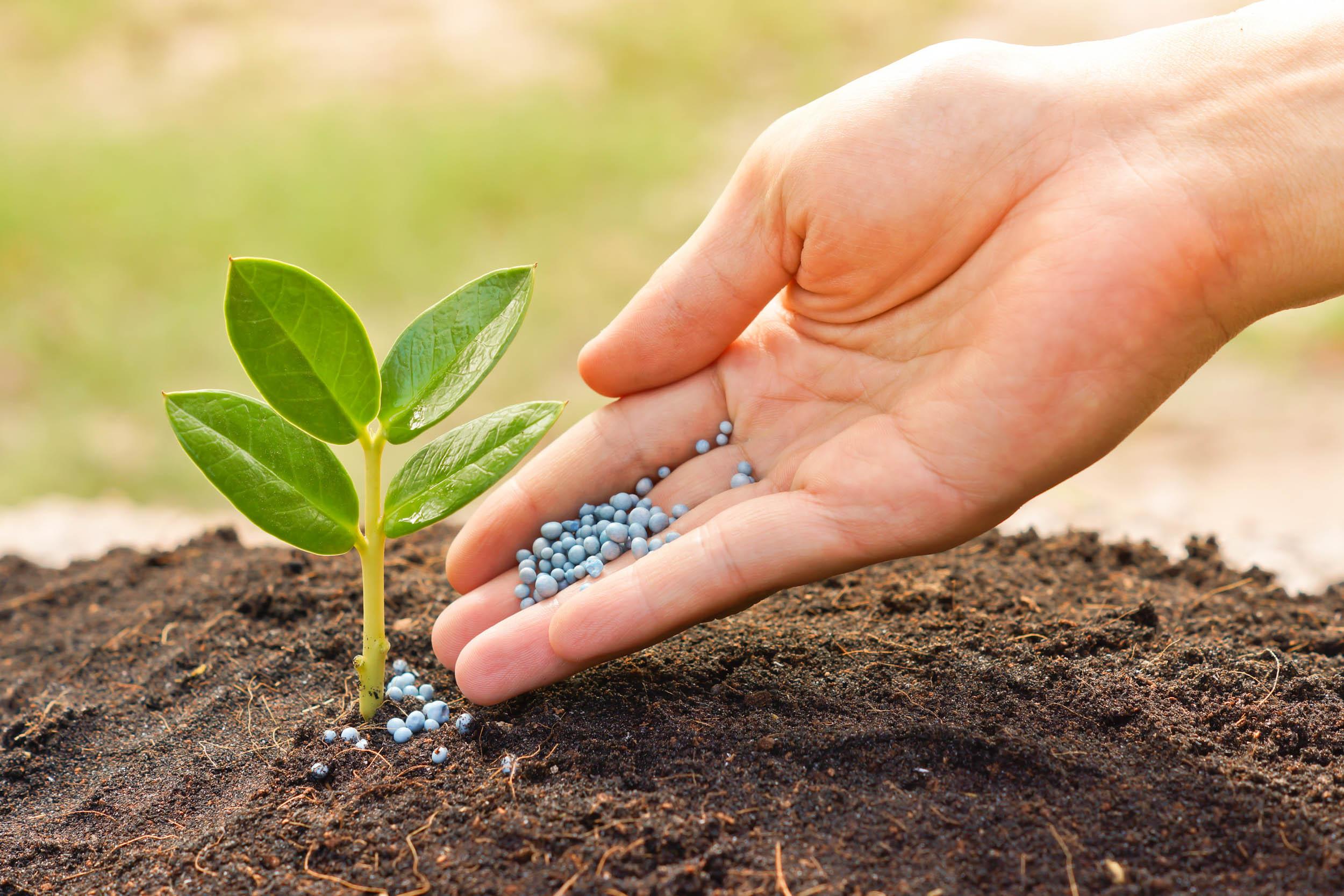 Gnojenje - goriva za rastline
