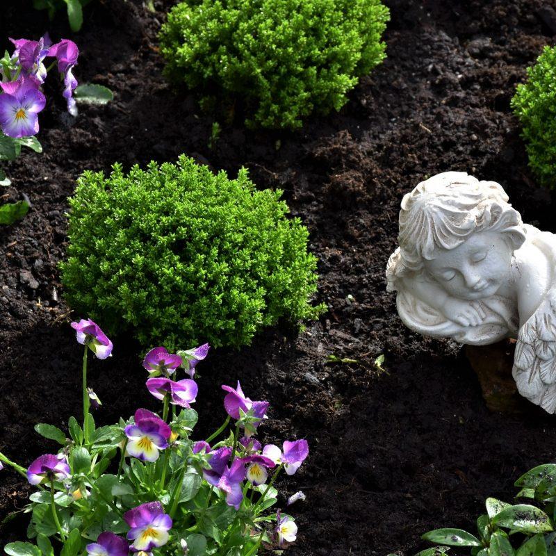 Jesenska zasaditev na grobovih